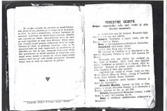 Pascalie 2 (Copy)
