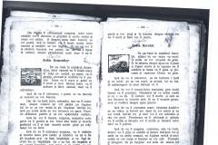 Pascalie 5 (Copy)