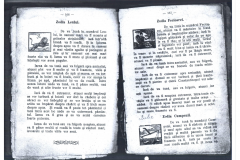 Pascalie 6 (Copy)
